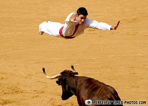 - Italian Bull Fighting Superman